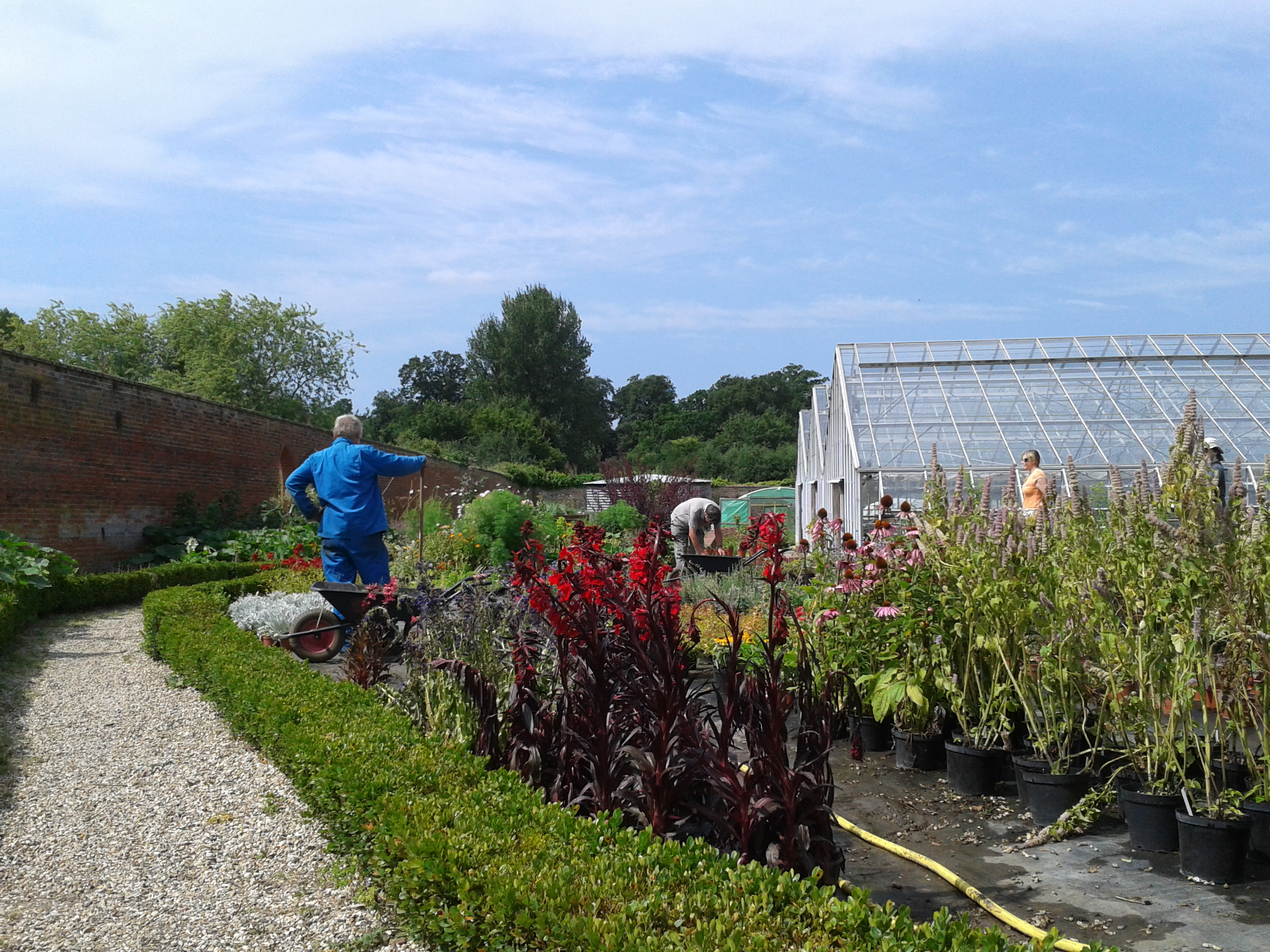 Volunteers hard at work in CWG plant nursery