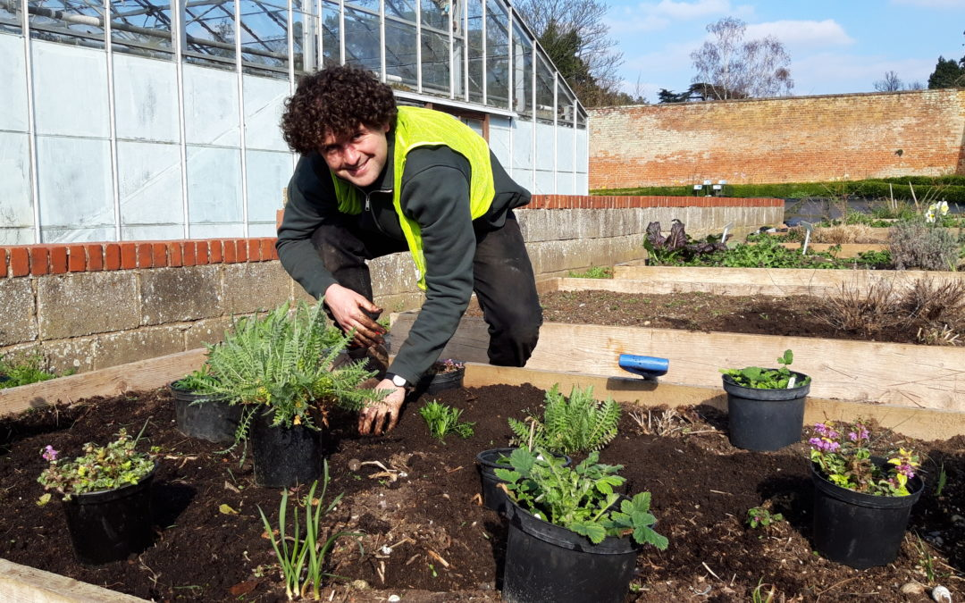 A Grow your future garden volunteer plants some new flowers into a flower bed