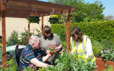 Older people carry on gardening with local project 🌺