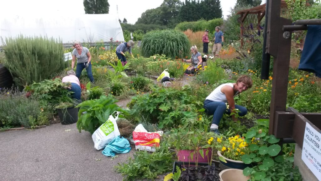 Gardening Group: ActivGardens: Internship Position 2018