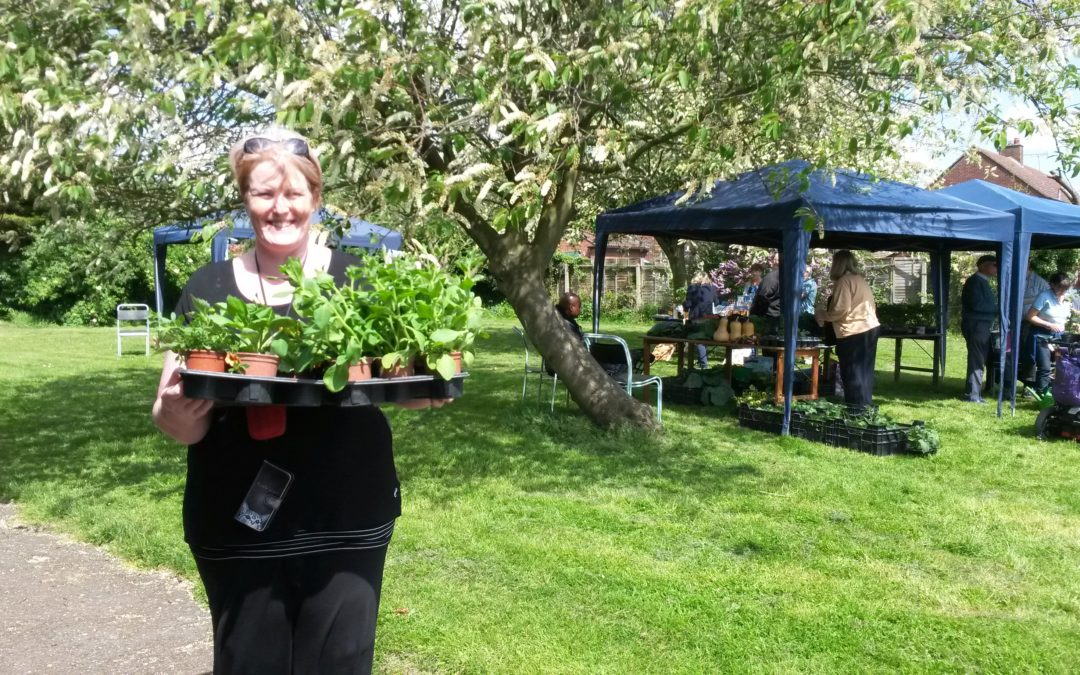 Garden project promises community cheer at festive market