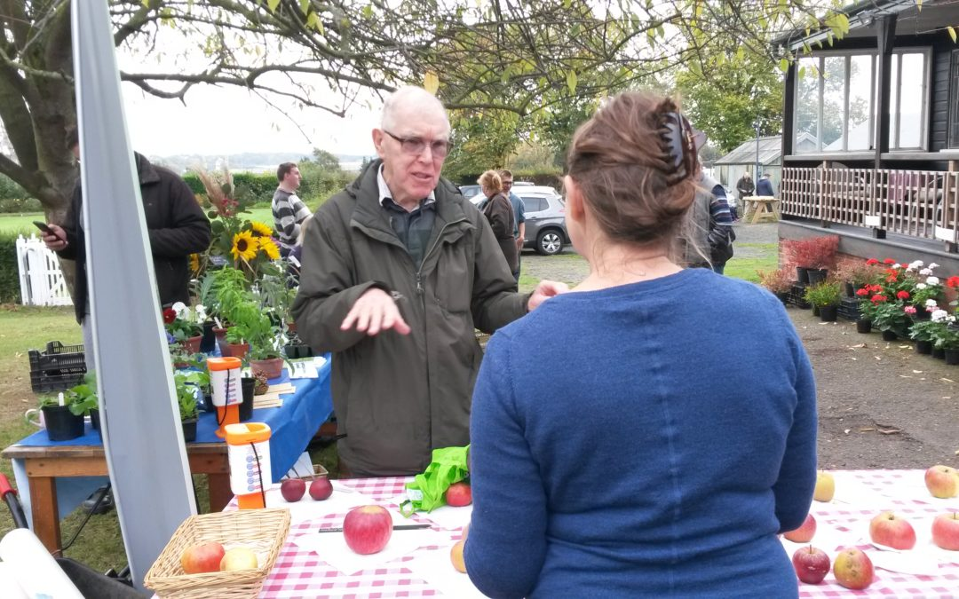 Celebrate local harvest at community garden market