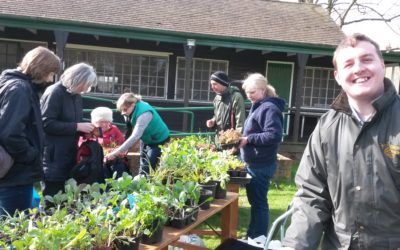 Fun for all the family at Community Market & Open Garden