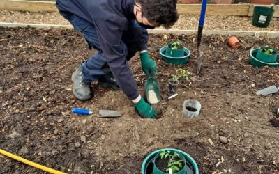 National Gardening Week at the People's Community Garden